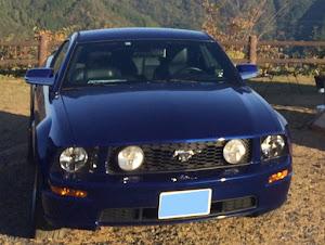 マスタング クーペ  2005 GT 5MTのカスタム事例画像 tamusさんの2020年10月25日17:39の投稿