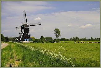 Photo: Nederland Natuur Landschap met molen Foto: Jan Dijkstra