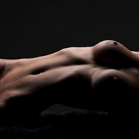 by Peter Driessel - Nudes & Boudoir Artistic Nude ( boudoir, bodyscape, nude, naked, nudes )