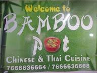 Bamboo Pot photo 4