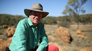 Port Augusta to Darwin: The Ghan thumbnail