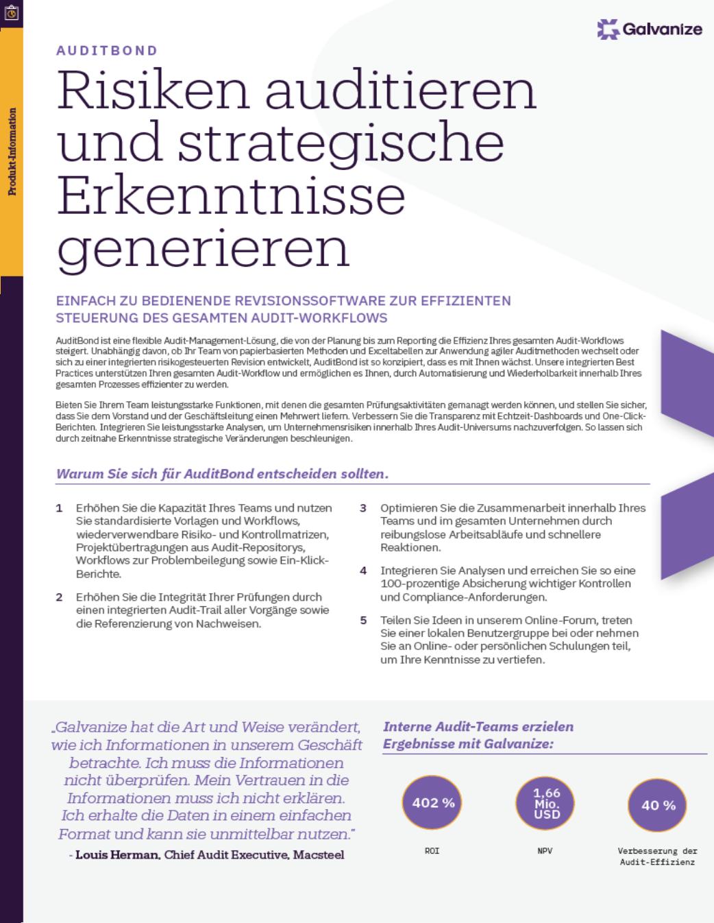 Risiken auditieren und strategische Erkenntnisse generieren