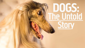 Dogs: The Untold Story thumbnail