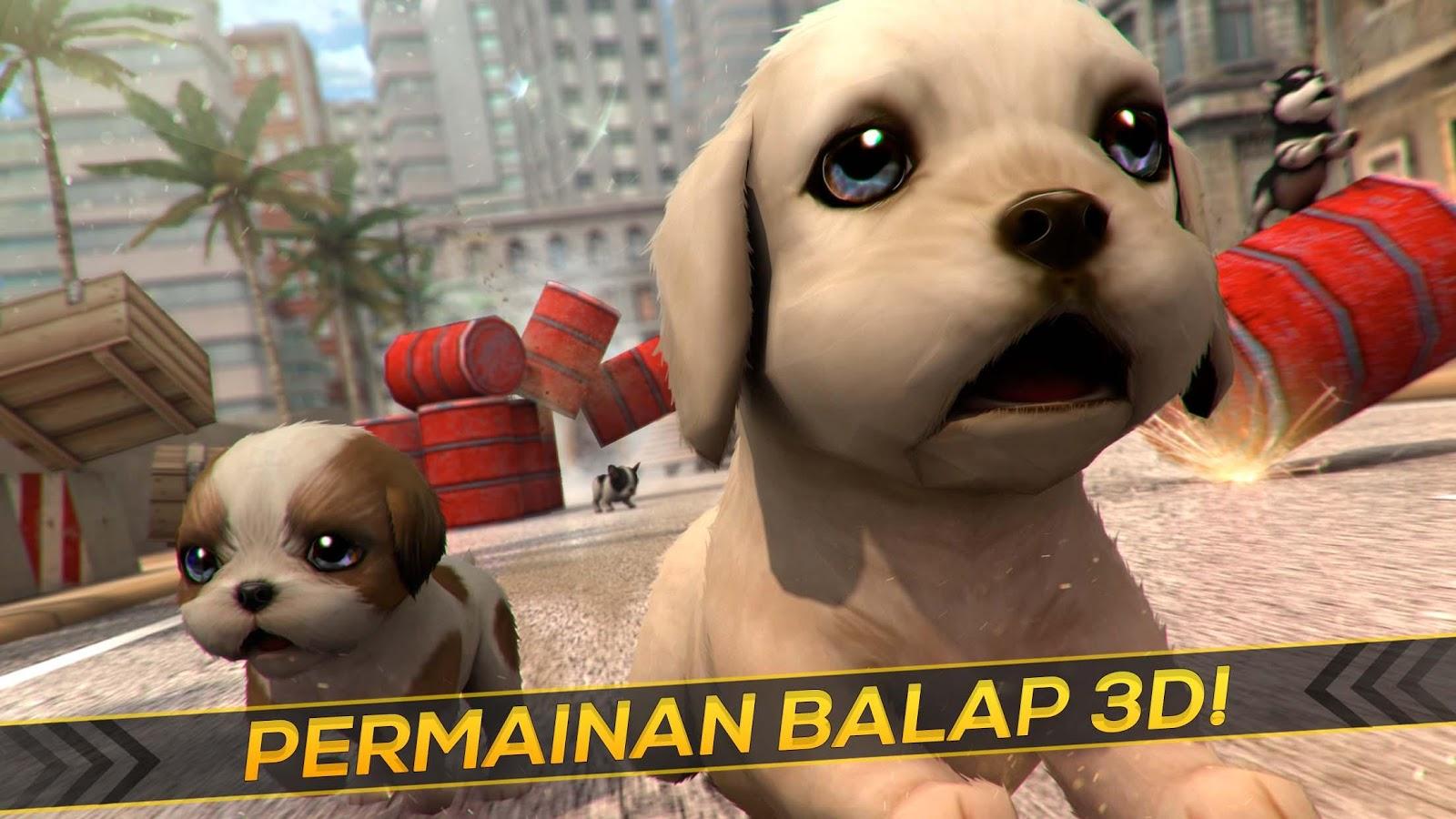 Saya Anak Anjing Balap Apl Android Di Google Play
