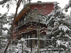 Photo: 【檜の香る家】の雪景色