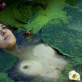 Ophelia by Matt Sou - Nudes & Boudoir Artistic Nude ( breast, nude nudity girl beauty waterlily water, nature, wet, ophelia, pond, nymphea, ophélia, nymph )