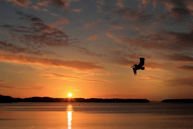 Sunset di Alexkok