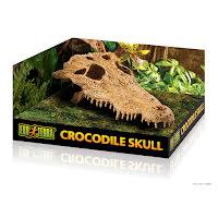 Krokodilskalle