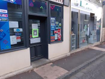locaux professionels à Menetou-Salon (18)
