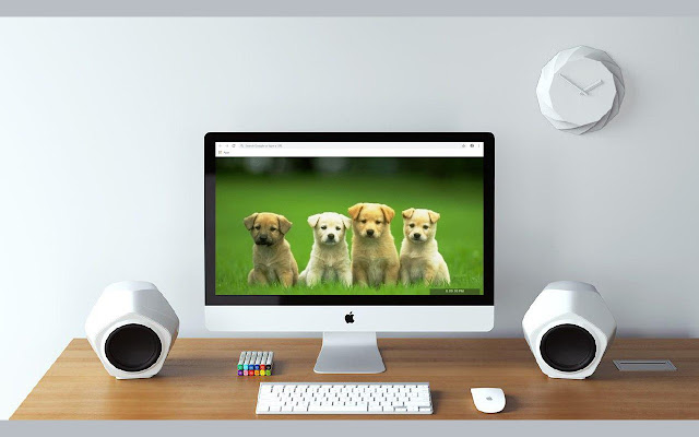 Cute Dogs & Puppies 2020 Wallpapers