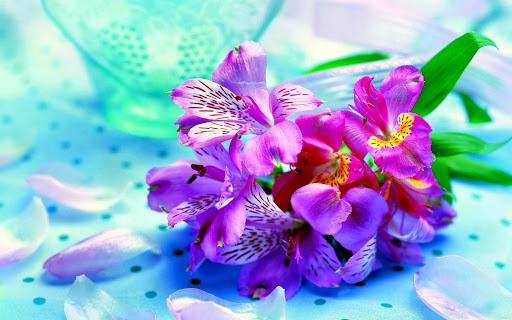 玩個人化App|花の壁紙免費|APP試玩