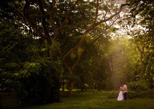 Fotógrafo de bodas Carlos Herrera (carlosherrerafo). Foto del 23.06.2015