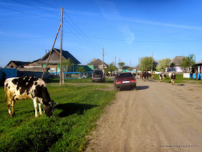 Photo: Traffic in one of the villages near Kamislov