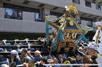 Photo: 【平成26年(2014) 本宮】 コスモスセンターでの神輿もみ。