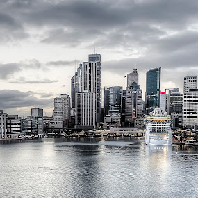 Sydney Harbor by Barb Hauxwell - Buildings & Architecture Office Buildings & Hotels ( water, clouds, harbor, ship, cruise ship, australia, buildings, sunrise, downtown, sydney )