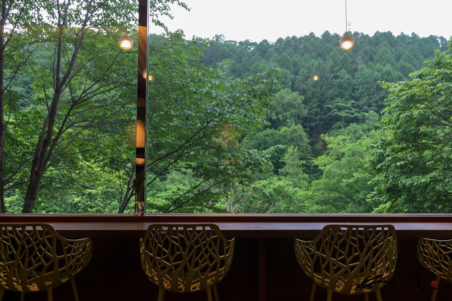 窓から望む緑の風景