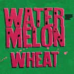 Flying Dog Watermelon Wheat