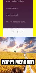 Poppy Mercury Pop Malaysia - náhled