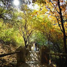 Wedding photographer Tatyana Levickaya (darina07). Photo of 11.02.2015