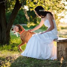 Wedding photographer Tamas Sandor (stamas). Photo of 31.05.2017