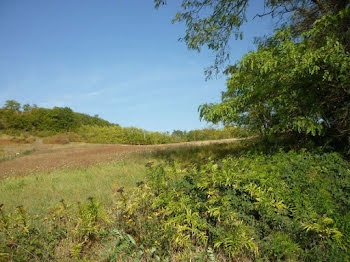 terrain à Monsegur (47)