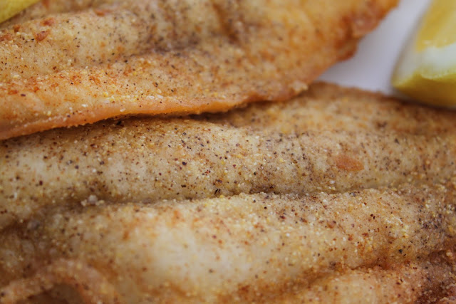 Cornmeal Fried Catfish With Remoulade Recipes — Dishmaps