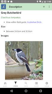 Australian Birds Guide - náhled