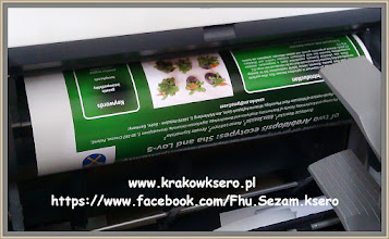 Photo: poster A0 papier fotograficzny 290g/m usługa druku realizowana na poczekaniu
