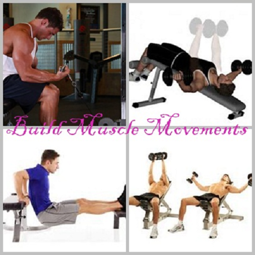Build Muscle Movements