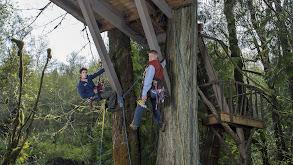 Towering Treetop Teahouse thumbnail