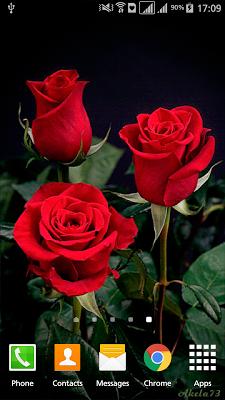 Rose Flower Live Wallpaper Pro - screenshot