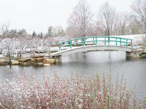 Photo: Snow on the bridge and tower in the distance at Cox Arboretum in Dayton, Ohio.
