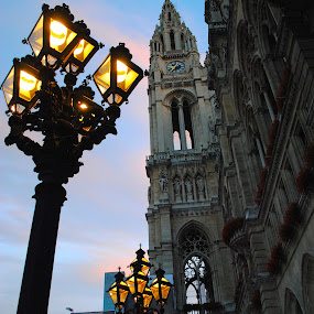 My Photo Journal ~ Vienna, Austria ~ Summer 2017 by Ray Anthony Di Greco - Buildings & Architecture Public & Historical ( art, statues, cities, architecture,  )