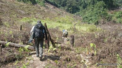 Photo: jungle trek to Data Opet, Muller Mountain