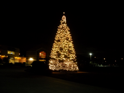 Christmas Holiday Season Begins at LaCenterra with Tree Lighting