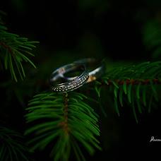 Wedding photographer Anastasiya Likhodey (LAN27). Photo of 28.11.2017