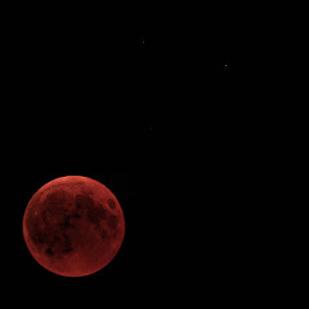 Blood Moon by Johannes Oehl - Landscapes Starscapes ( starry sky, saturn, stellar astronomy, beauty, astronomical, physical science, impressed, moon light, deep focus, lunar eclipse, orange-red, stunning, space, nighttime, baden-wurttemberg, amazing, beautiful, time zone, saturated colour, planet, night, astrophysics, july, starlight, beauty in nature, astronomy, central lunar eclipse, moon, descriptive color, light, color image, isolated objects, detail, planetary science, creative image, moonlight, germany, saturated color, nature-photography, long exposure, astro-photography, summer, 21st century, baden-württemberg, impressing, bloodmoon, friday, night scene, europe, descriptive colour, isolated on black, black background, star, telephoto, one object, blood moon, eleven oclock, baden-wuerttemberg, orange, bietigheim-bissingen, 2018, high contrast, gmt+01:00 (central european standard time zone), summertime,  )