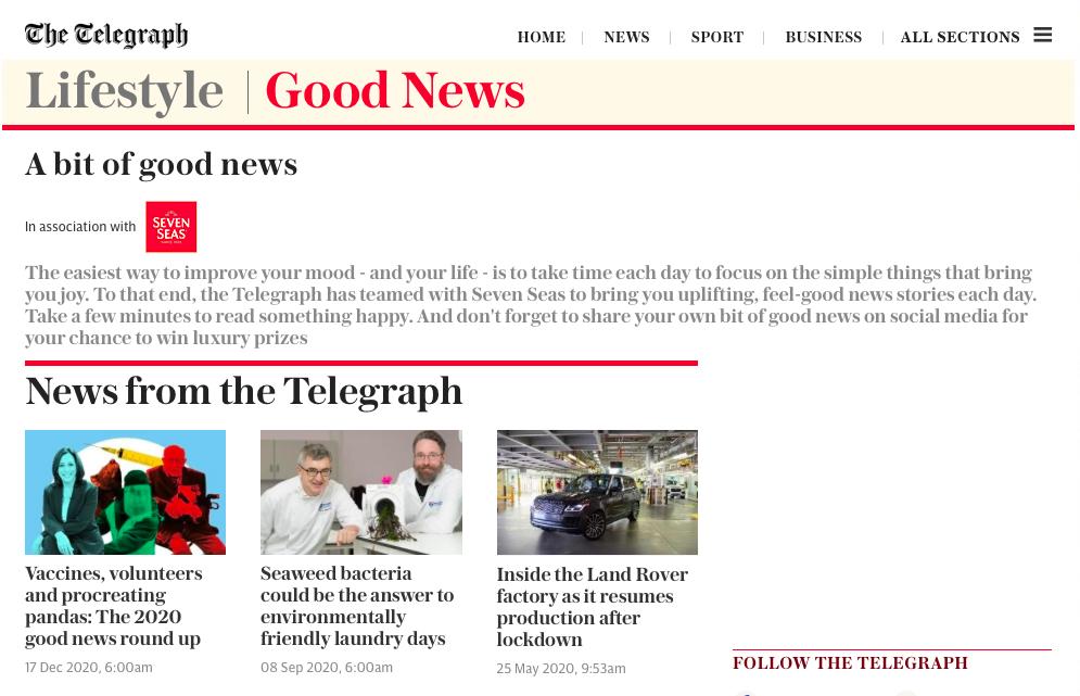 Seven Seas + The Telegraph