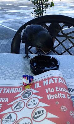 Il corvo amante della lettura di gaetano66