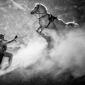 Dancing With Horses by Rio Tanusudiro - Black & White Street & Candid ( tame, playing, moment, dust, light, man, animal )
