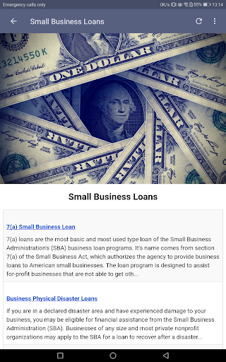 Small Business Loans screenshot 11