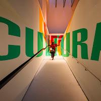 Via libera alla Cultura di