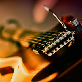 by Harry Patriantono - Artistic Objects Musical Instruments