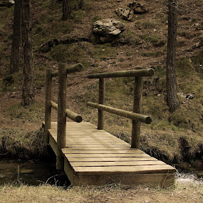wooden bridge by Joseph Escopin - Landscapes Prairies, Meadows & Fields ( teruel, bridge, rivulet, wooden bridge, spain )