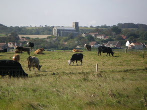 Photo: Norfolk Coast Path - From Wiveton to Cromer - Salthouse