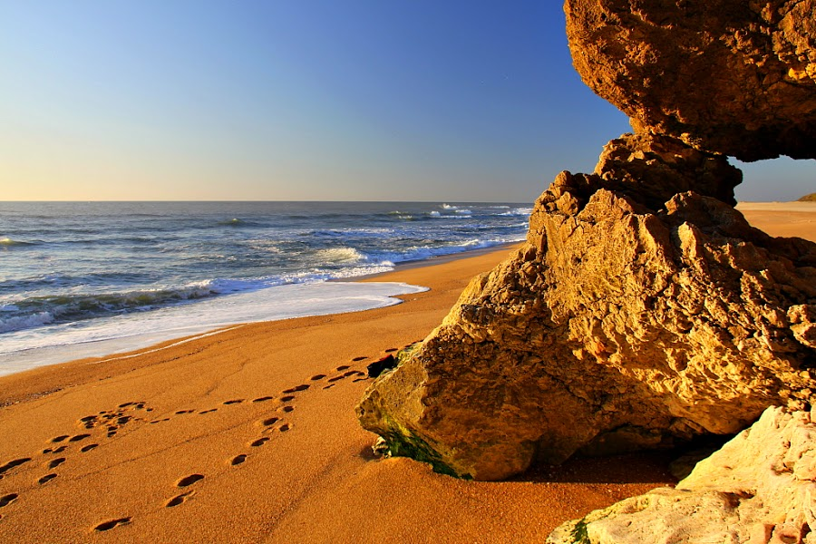 Praia do Norte by Gil Reis - Nature Up Close Rock & Stone ( beaches, nature, portugal )