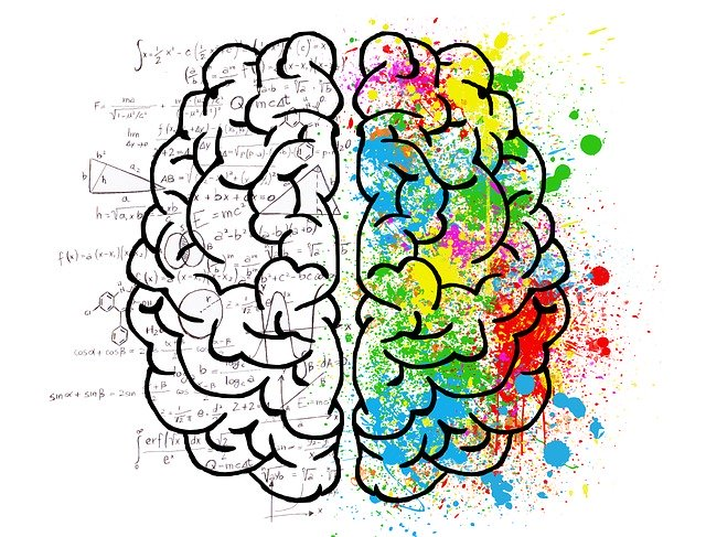 An image of a brain illustrating the two sides of mind and their functions.