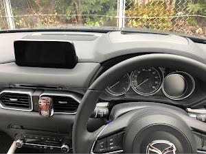 CX-5 KF系 2018年式XD L package 4WDのカスタム事例画像 らりくまさんの2019年01月12日12:39の投稿
