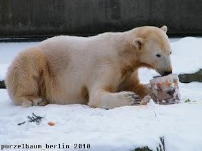 Photo: Die Eistorte wird in Angriff genommen ;-)
