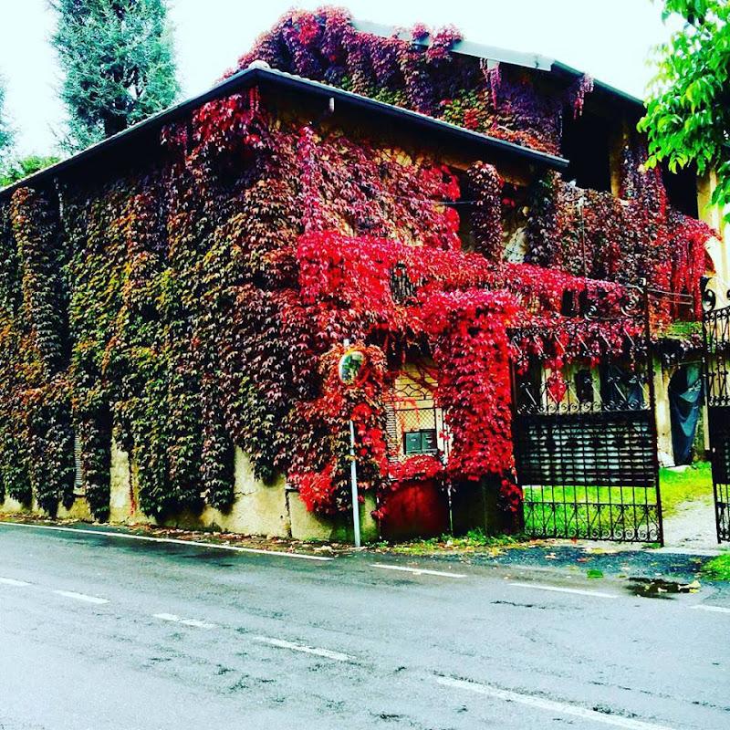 Red House di mattiacano94